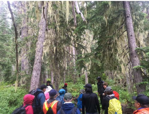 Project Update: Staff and Community Hike The Nlháxten /Cerise Creek Conservancy